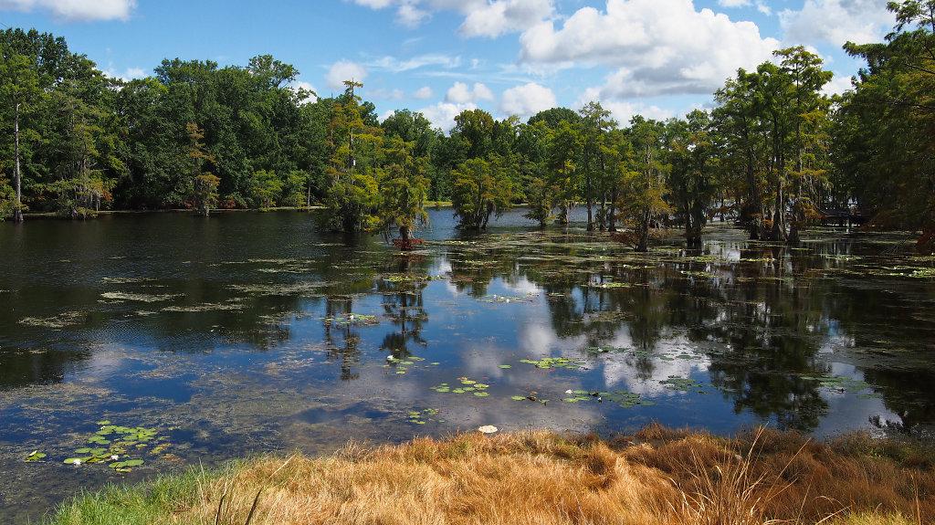 Black Bayou Lake
